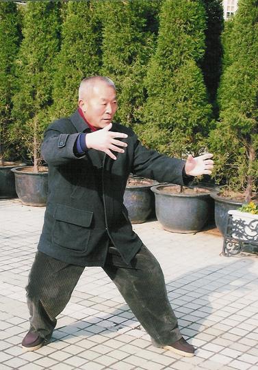Taiji Liikesarjat