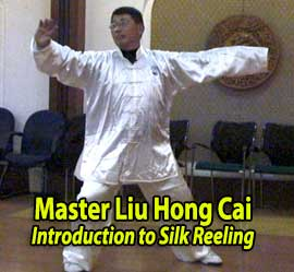 Liu Hong Cai Silk Reelling video