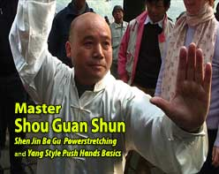 Shou Guan Shun bagua video